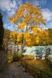Carlsbad no tempo do outono, República Checa Imagens de Stock Royalty Free