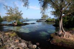 Carlsmith Beachpark, Hilo, Hawai Fotografie Stock
