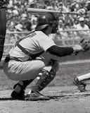 Carlton Fisk, Boston Red Sox στοκ εικόνες με δικαίωμα ελεύθερης χρήσης