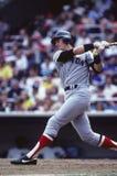 Carlton Fisk Boston Red Sox foto de archivo