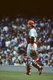 Carlton Fisk Boston Red Sox στοκ φωτογραφία