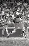 Carlton Fisk, Boston Red Sox Stock Photos