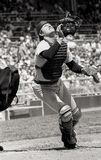 Carlton Fisk, Boston Red Sox Stock Photography