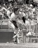 Carlton Fisk, Boston Red Sox Royalty Free Stock Photos
