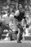 Carlton Fisk, catcher των Chicago White Sox στοκ φωτογραφία