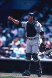 Carlton Fisk Chicago White Sox στοκ φωτογραφίες με δικαίωμα ελεύθερης χρήσης