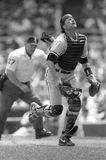 Carlton Fisk, Chicago White Sox catcher Stock Photography