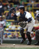 Carlton Fisk, Chicago White Sox Stock Images