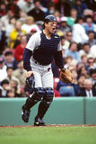 Carlton Fisk Stock Photo