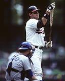 Carlton Fisk, les White Sox de Chicago Images libres de droits