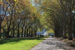 Carlton Gardens Melbourne Australia Royaltyfria Bilder