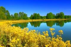 Carlyle Hazlet stanu Jeziorny park Fotografia Royalty Free