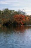 Carmans河-沙福克县,纽约 库存图片