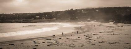 Carmel加利福尼亚加州17英里驱动 免版税库存图片