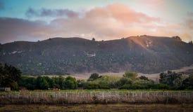 Carmel加利福尼亚加州17英里驱动 免版税库存照片