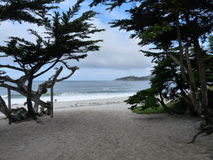 Carmel Beach Royalty Free Stock Photography