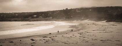 Carmel California CA 17 Mile Drive Royalty Free Stock Image