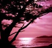 Carmel, la Californie photos libres de droits