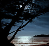 Carmel Moonrise Stock Photography