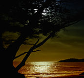 Carmel Moonrise Royalty Free Stock Image