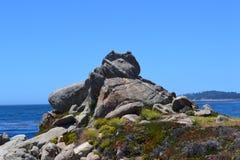 Carmel morzem Zdjęcie Royalty Free