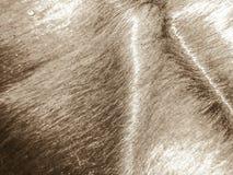 Carmel skóry wzoru tekstura Fotografia Stock