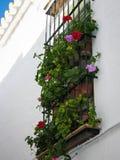 Carmona, Andalusia, Spain Royalty Free Stock Image