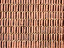 carmona forteczne bramy dachu Seville Spain płytki Obrazy Stock