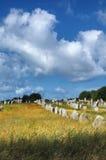 Carnac (Bretagna, Francia): menhir Immagini Stock