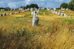 Carnac (Bretagna, Francia): menhir Fotografie Stock Libere da Diritti