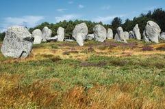 Carnac (Bretagna, Francia): menhir Immagine Stock Libera da Diritti
