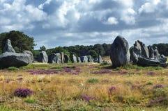 Carnac (Bretagna, Francia): menhir Fotografia Stock Libera da Diritti