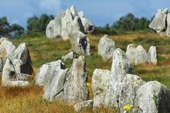 Carnac (Bretagna, Francia): uccelli sui menhir Fotografia Stock