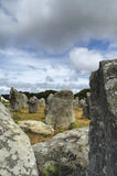 Carnac (Brittany, France): menhir and dolmen Stock Images