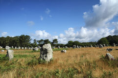 Carnac (Brittany, France): menhir Stock Images