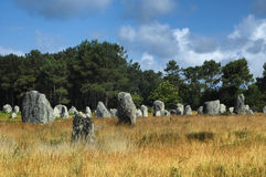 Carnac (Brittany, France): menhir Stock Photo