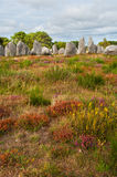 Carnac megalithic stones, Brittany Royalty Free Stock Photography