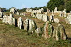 Carnac megaliths. Alignment in Brittany, France Royalty Free Stock Image