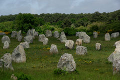 Carnac Neolithic Menhirs Stock Images