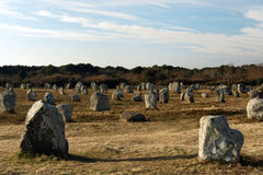 Carnac stones in britttany Stock Image
