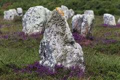 Carnac stones Stock Photos