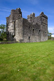 carnasserie城堡 图库摄影