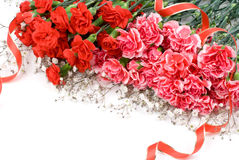 Carnation bouquet Stock Photography