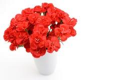 Carnation bouquet Stock Image