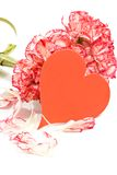 Carnation bouquet. And Valentine Card royalty free stock photo
