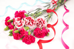Carnation bouquet Royalty Free Stock Image