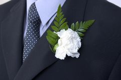 Carnation buttonhole. White carnation buttonhole on dark suit Royalty Free Stock Photo