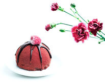 Carnation and cake Stock Images