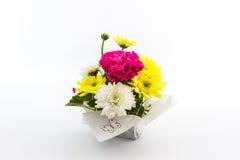 Carnation and chrysanthemum flower in vase. Royalty Free Stock Photo
