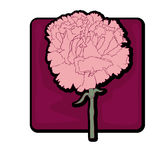 Carnation clip art Stock Image
